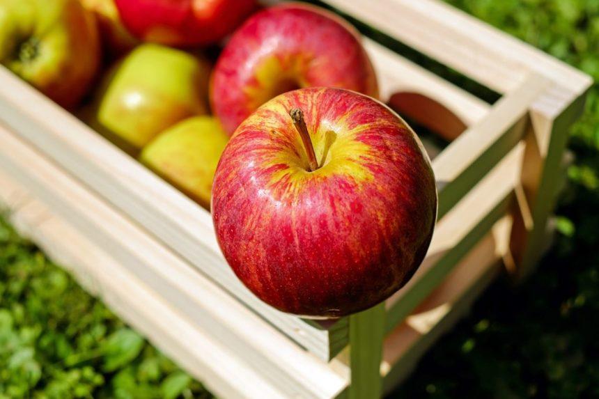 Die 5 besten Lebensmittel um den Cholesterinwert zu senken